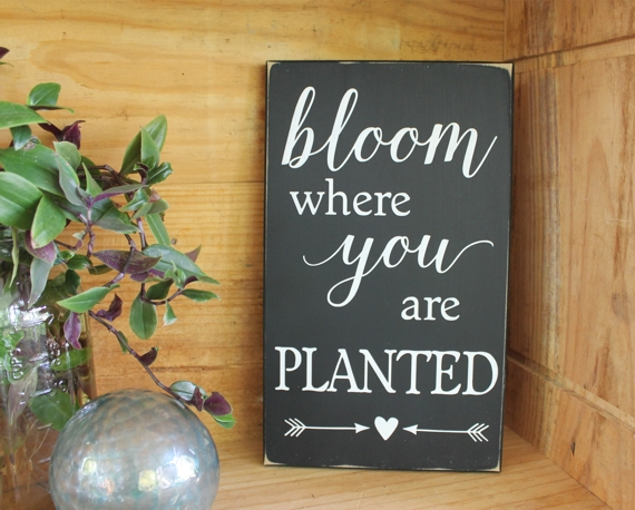 Bloom Where You Are Planted Sign Wood Handpainted