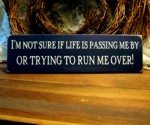 I'm not sure if Life is Passing Me by...