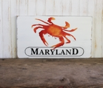 Maryland Steamed Crab