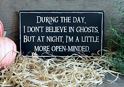 During the day I don't Believe in Ghosts. But at night I'm a little more open-minded.