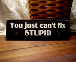 You Just Can't Fix Stupid