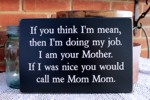 If You Think I'm Mean I am Your Mother