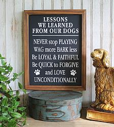 Lessons We Learned From Our Dogs