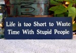 Life is too Short to Waste Time with Stupid People