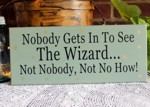 Nobody Gets In To See The Wizard  4